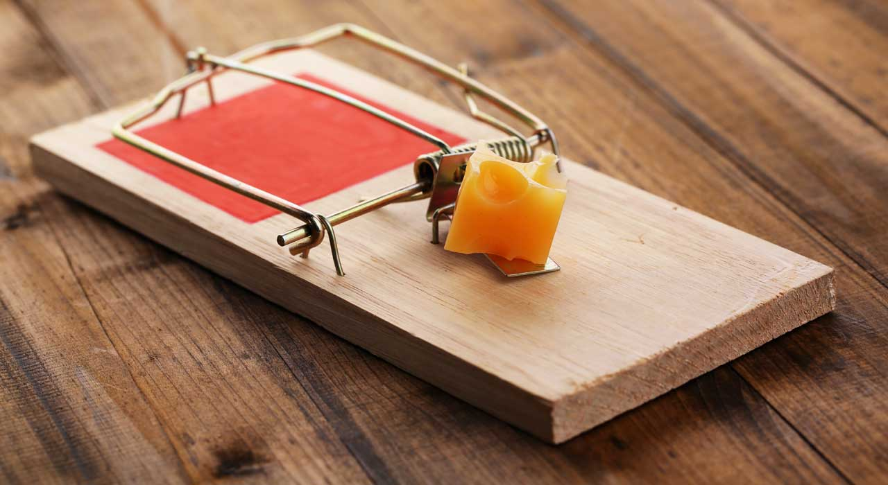 You see a mousetrap…